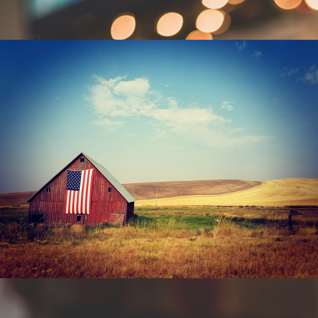 Views from the Heartland of America